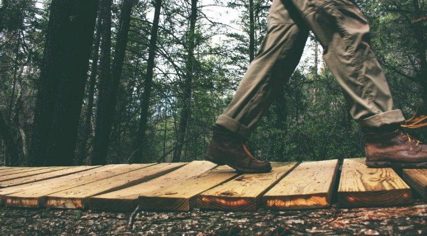 Photo of Yürümek Yaratıcılığı Nasıl Tetikliyor?